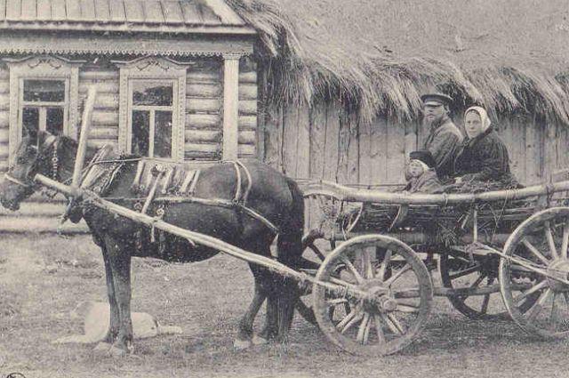 В деревнях говорили, что «худ приплод на Касьянов год»