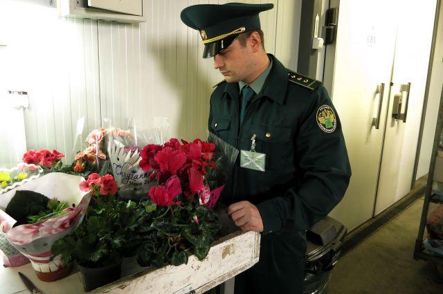 480 тонн завезли в Калининградскую область накануне 8 марта.