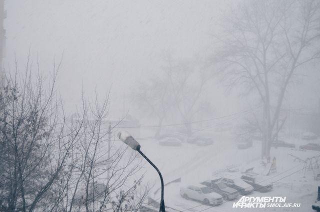 В регионе ожидаются осадки, местами сильные, в виде снега и дождя