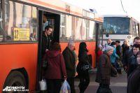 Автомобилисты в Калининграде помогают автобусам увозить людей с остановок.