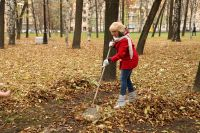 Месячники чистоты пройдут в городе с апреля по май и с сентября по октябрь.