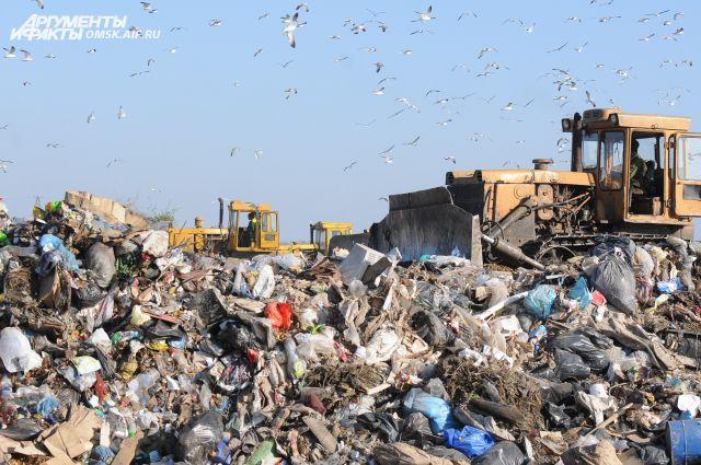 Со следующего года весь мусор будут сортировать по закону.