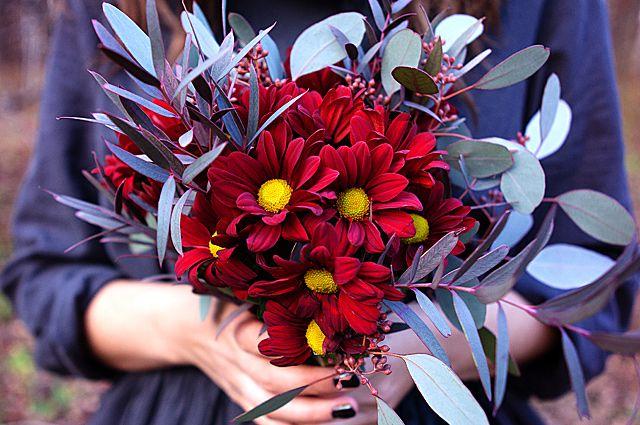 Цветы выражают разные оттенки настроения и чувств