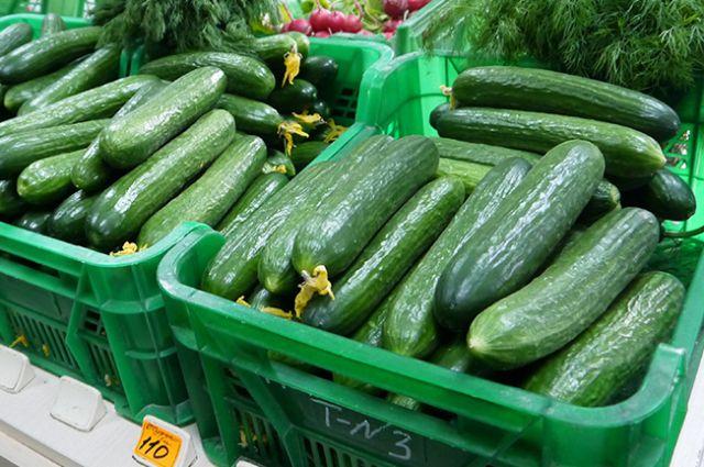 7,5 тонн огурцов из Беларуси, зараженных трипсом, не пустили в Калининград.