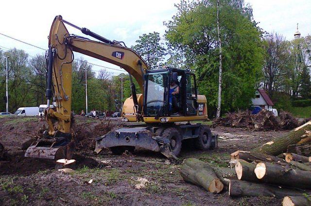 62 дерева вырубил застройщик возле озера Тихое в Светлогорске.