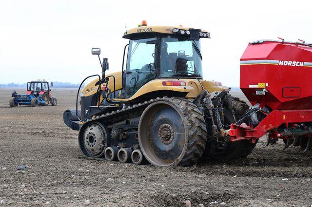 В Калининградской области вымерзло 40% озимых посевов.