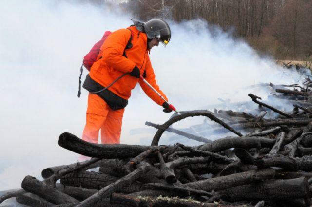 647 га земли выгорело в Калининградской области с начала года.