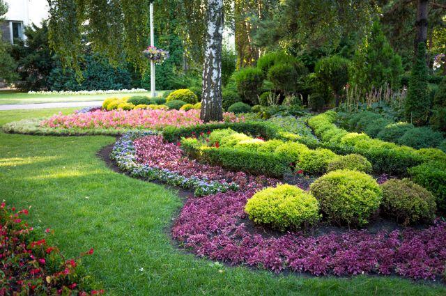 Посадка растений будет выполняться в основном в весенне-летний период.