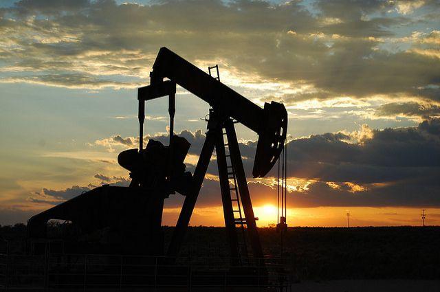 Руководители «Роснефти» и «Петровьетнама» оценили буровые работы на шельфе