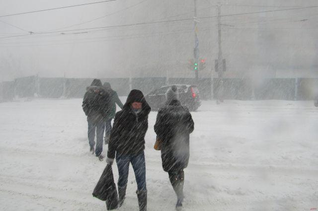 ВПетропавловске-Камчатском назавтра отменили занятия вшколах