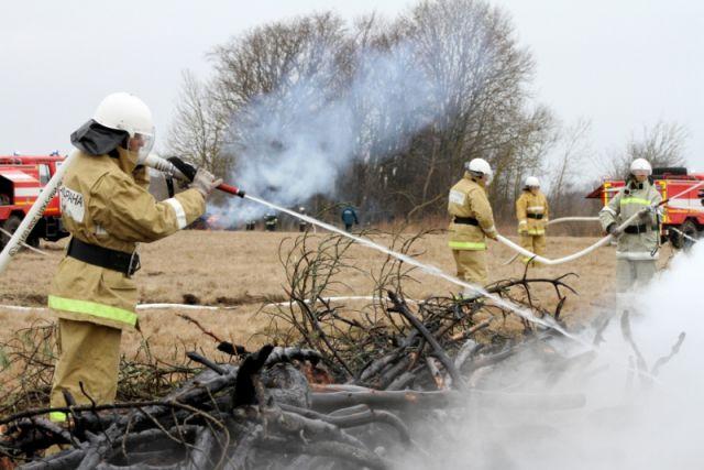 МЧС наградило школьника из Советска за помощь в тушении лесного пожара.