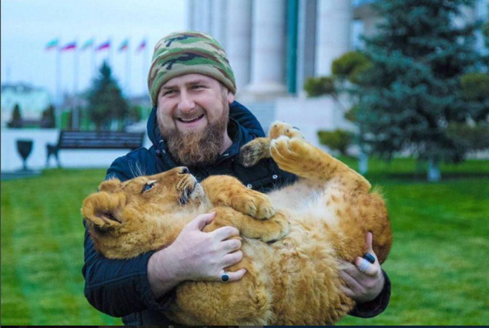 Рамзан Кадыров поделился в соцсетях фотографией, где он держит на руках львенка. Фото собрало почти 46 тысяч лайков.