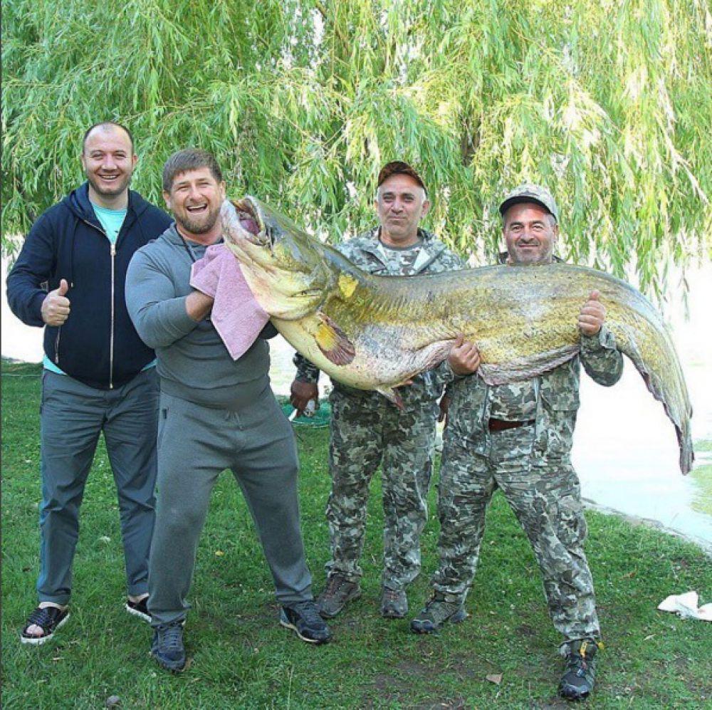 На фото глава Чечни и ещё два человека держат двухметровую рыбу. Огромного сома Кадыров поймал на рыбалке.