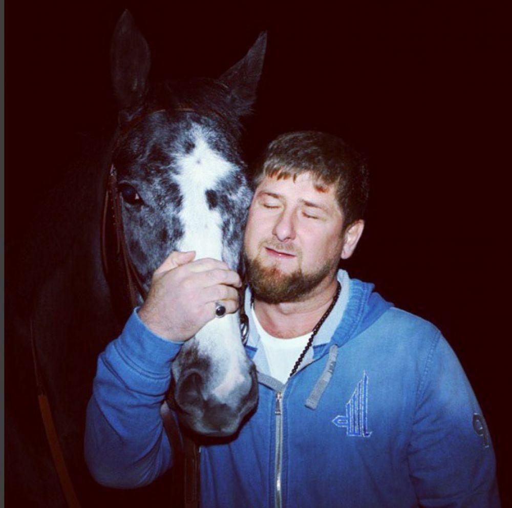 Глава Чечни на фото со своей лошадью Дэшинг Хоум. На странице в соцсети Кадыров возмущается решением Министерства финансов Чехии не выплачивать призовые его скакунам.