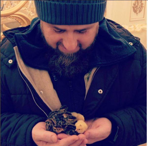 На странице главы Чечни есть и фото, где он на руках держит несколько цыплят. Снимок собрал более 43 тысяч лайков.