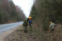Обрезка кустарника будет произведена на территории от контрольно-пропускного пункта (3 км от Зеленоградска) до пос.Лесной и далее, по мере необходимости.