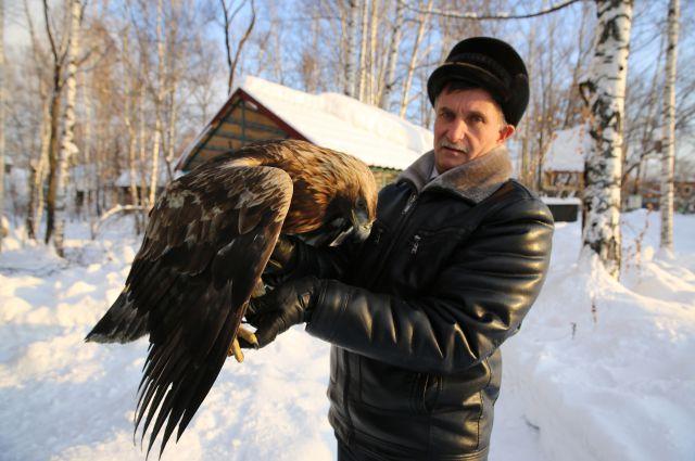 Несколько дней сотрудники заповедника «Кузнецкий Алатау» боролись за жизнь истощенного краснокнижного беркута. Его удалось спасти. Но если люди будут продолжать целенаправленно убивать животных своим отношением к природе, тут никто не поможет.