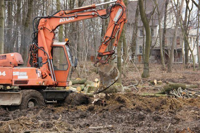 Вырубка деревьев велась без разрешительных документов.
