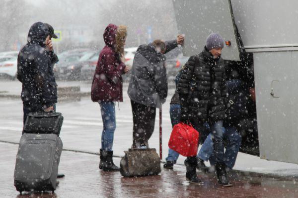 Пассажиры грузят вещи в автобус, который их доставит из Ростова в аэропорт Краснодара, откуда они отправятся своим рейсом к месту назначения.
