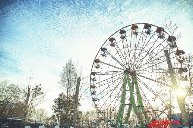 В парке им. 30-летия ВЛКСМ полным ходом идёт посадка деревьев.