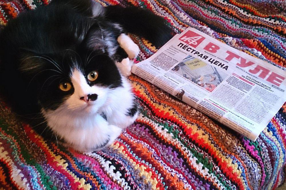 На седьмом месте - очаровательное фото с котом, изучающим экономическую обстановку в Туле, от Евгении Дмитриевой.
