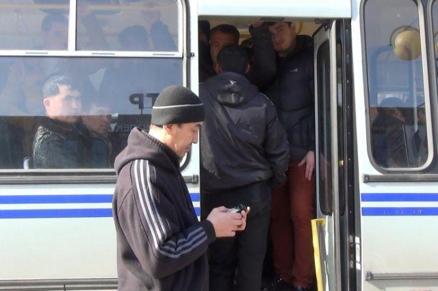 12 нелегальных мигрантов задержали полицейские на рынке Калининграда.