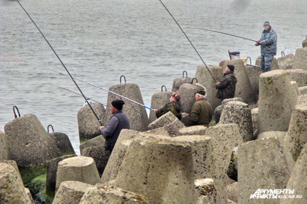Во время салачной путины десятки рыбаков выходят на мол.