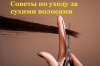Советы по уходу за сухими волосами
