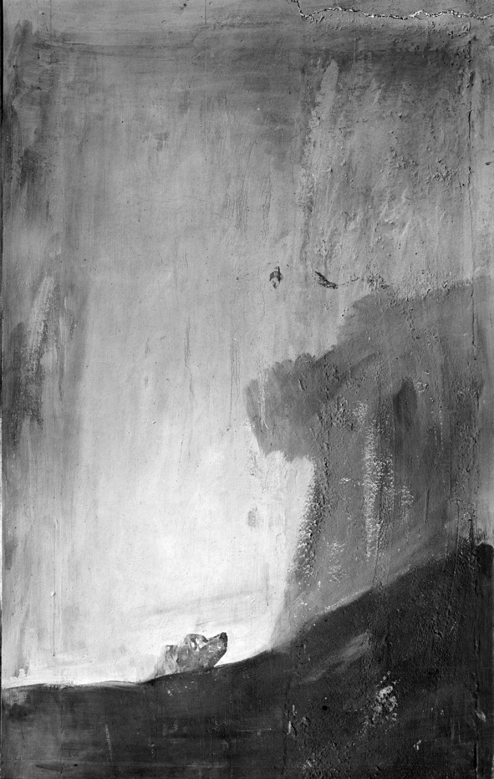 «Собака». Одна из «Мрачных картин», написанных на стенах «Дома Глухого». Вероятно, картина незавершённая. Изначальное намерение Гойи неизвестно. Голова собаки то ли появляется из-за склона, то ли выныривает из мутной воды. Животное с пронзительными, почти человеческими глазами вызывает глубокое беспокойство и производит неизгладимое впечатление на зрителя.
