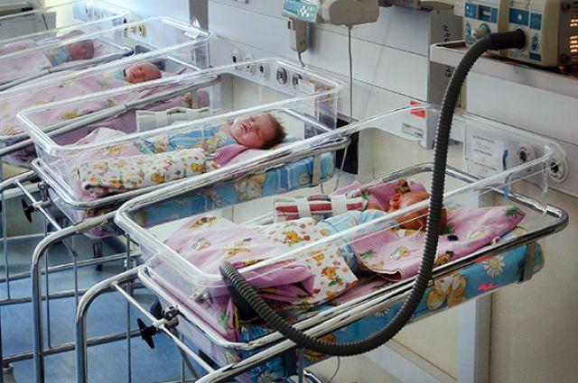 С начала года в шести калининградских семьях родились тройняшки.
