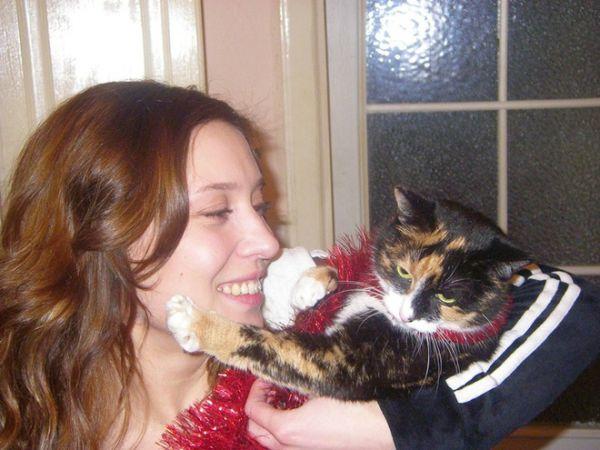 Алена Винницкая с удовольствием укрощает симпатичных кошек- «близняшек» черепахового окраса