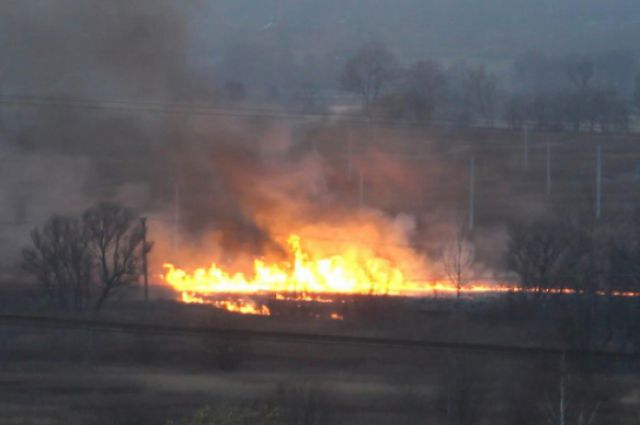 В полукилометре от дома пенсионера горела прошлогодняя трава.