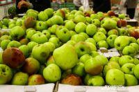 Ткачев предложил Калининградской области вместо Польши накормить яблоками всю Россию.