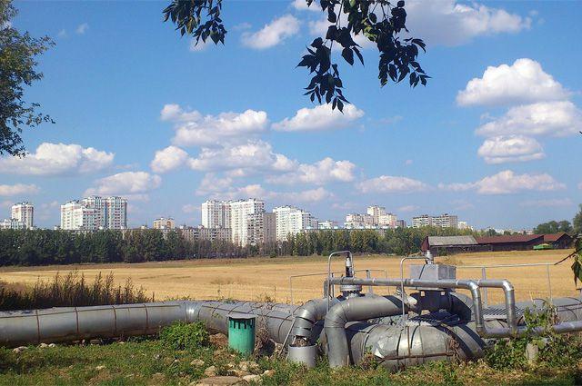 Опытное поле МСХА, улица Прянишникова.