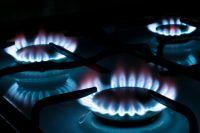 Нужно ли платить за обсуживаеие газовой плмты