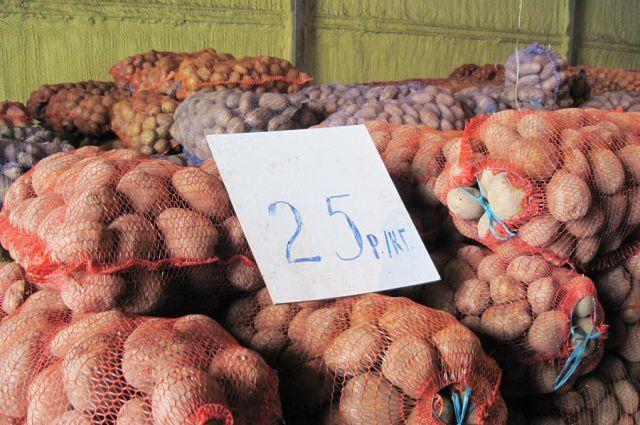 Два крупных хранилища овощей и фруктов планируют построить в регионе.
