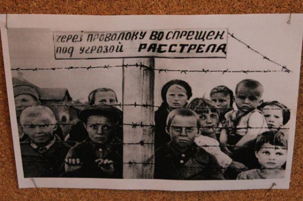 Некоторые фотографии Шебашова настолько страшные, что выставить их не представляется возможным