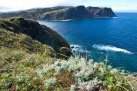 Бухта Малокурильская. Курильские острова, остров Шикотан.