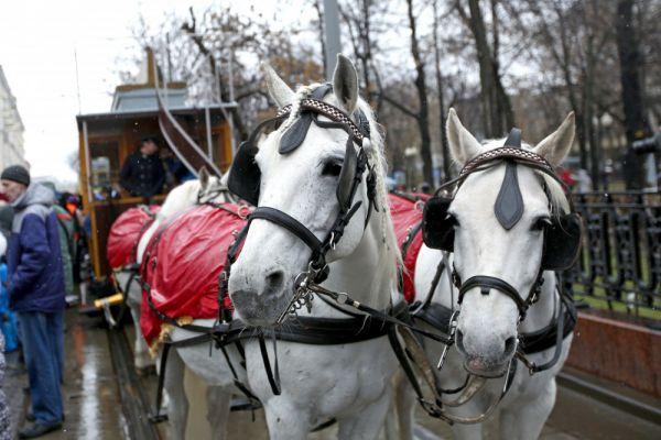 Запряженная лошадьми конка XIX века на ежегодном празднике московского трамвая на Чистопрудном бульваре.