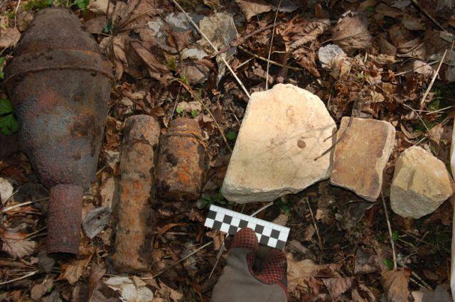 Склад боеприпасов и более 2 кг тротила нашли в лесу под Калининградом.