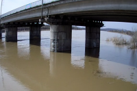 Уровень реки Кондома в Осинниках.