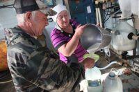Производителям молока выделят субсидии