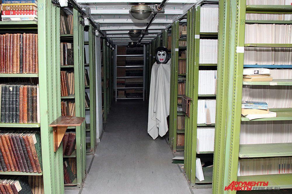 Иногда среди многочисленных полок с книгами можно встретить «обитателей хранилища».