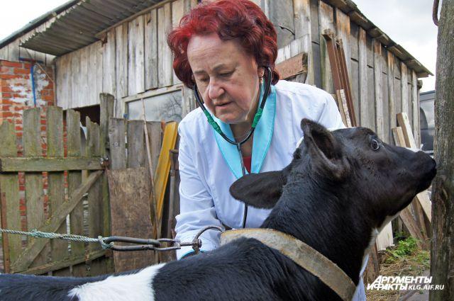 Мария Гурьянович умеет найти подход к любому четвероногому пациенту.