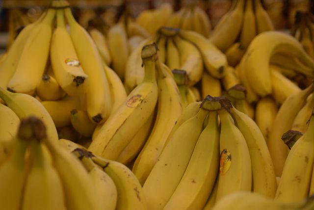 Главным путём распространения многоядной мухи служат бананы.