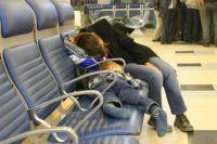 Сон — важнейшее условие поддержания работоспособности мозга