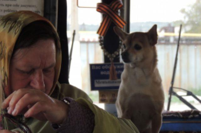 Капа в автобусе на протяжении всей смены.