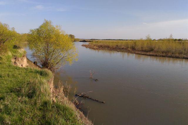 Река Алей, вытекающая из Гилёвского водохранилища, пока полноводна. Но уже в районе Рубцовска она не столь широка, как прежде.