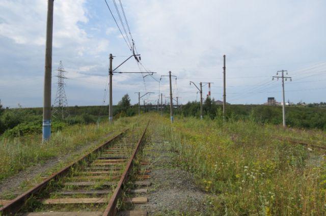 Под Калининградом поезд успел затормозить перед выехавшим на пути авто.