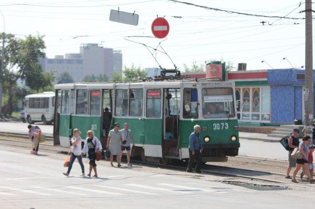 Пес несколько дней зайцем проездил на общественном транспорте